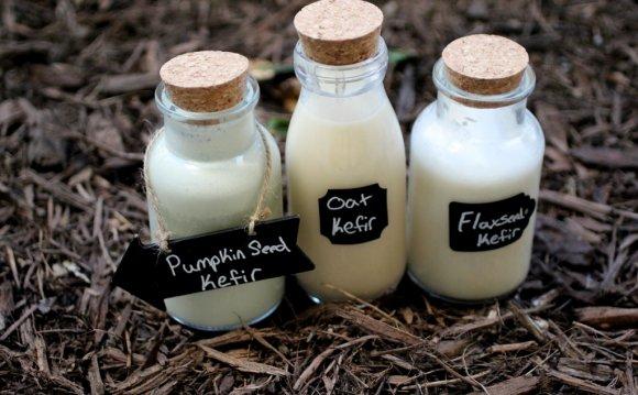 Dairy Free Kefir