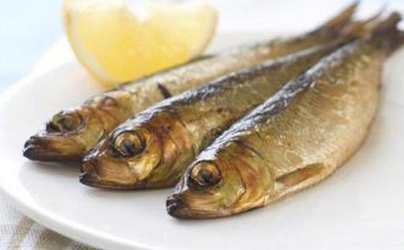 Tuna Vs. Sardines