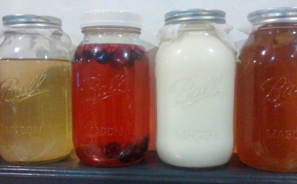 Far Left: Water Kefir (first