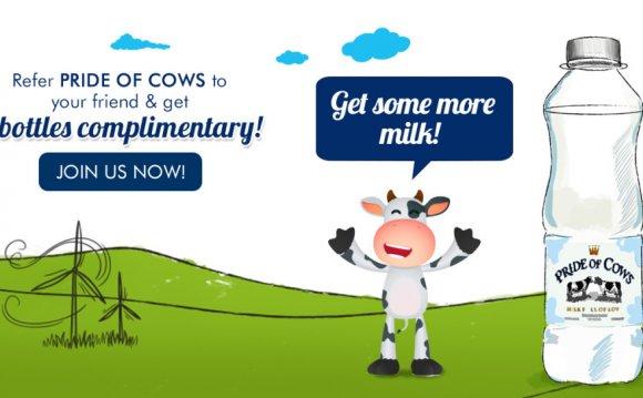 Get the best cow milk