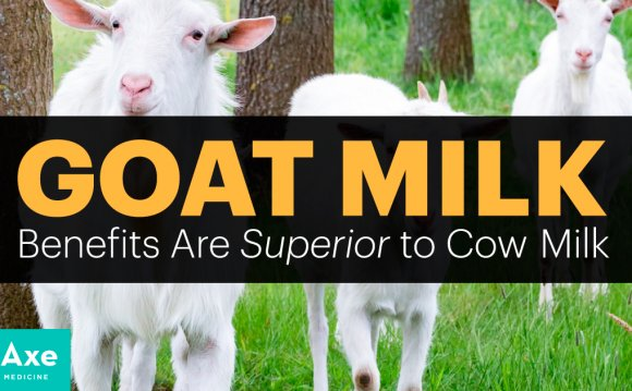 Goat Milk Benefits Are