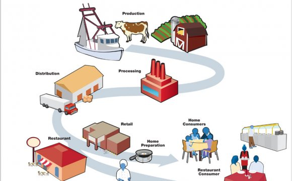 Chain of production for milk