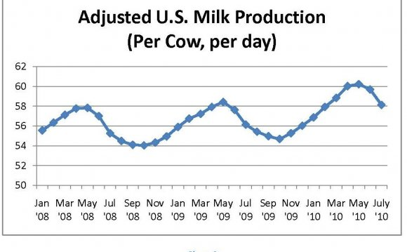 Average milk production of Holstein cows