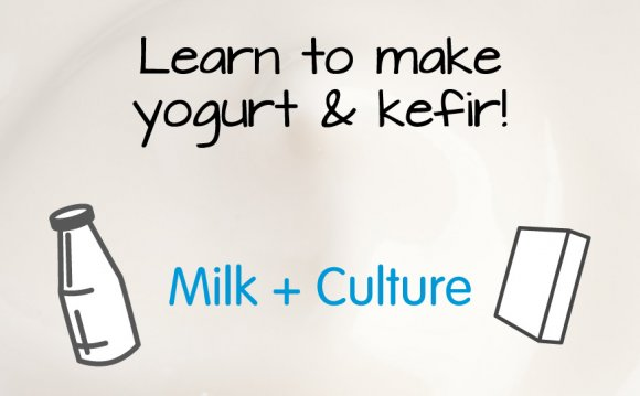 Kefir yogurt maker