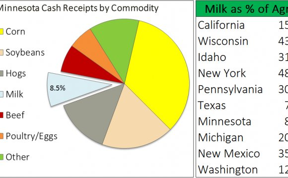 Top dairy producing states