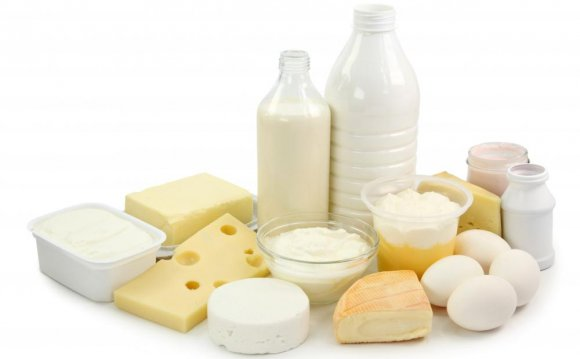 Milk and other dairy products