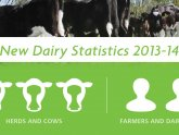 Average dairy Cow milk production