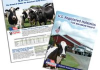 US Holsteins Breed of Choice